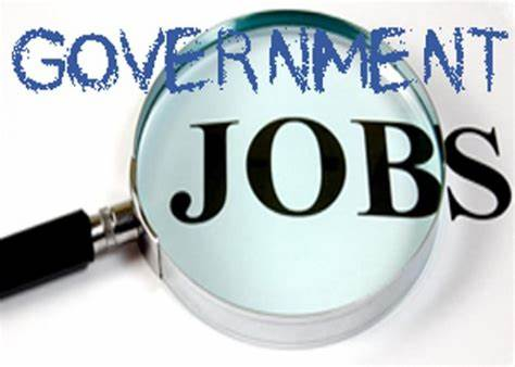 government job search